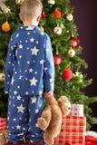 Urso da peluche da terra arrendada do menino na frente da árvore de Natal Fotografia de Stock