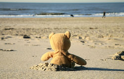 Urso da peluche na praia Fotografia de Stock Royalty Free