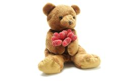 Urso da peluche no amor Fotos de Stock Royalty Free