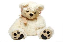 Urso da peluche nos vidros isolados Imagens de Stock Royalty Free