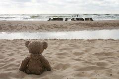 Urso da peluche pelo mar Fotos de Stock