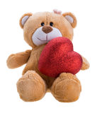Urso da peluche que prende um coração Fotos de Stock Royalty Free