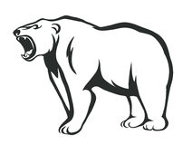 Urso da rosnadura Fotografia de Stock