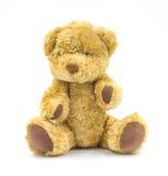 Urso de Brown isolado no fundo branco Imagens de Stock