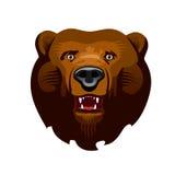 Urso de Kodiak ilustração stock