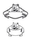 Urso de kodiak selvagem Fotografia de Stock