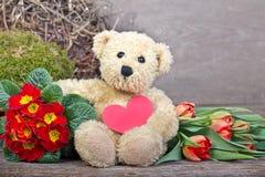 Urso de peluche Imagem de Stock Royalty Free