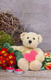 Urso de peluche Fotos de Stock Royalty Free