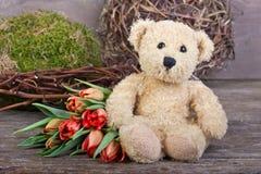 Urso de peluche Fotografia de Stock