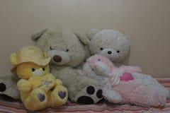 Urso de peluche bonito para o presente & o dia de Valentim imagens de stock