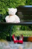 Urso de peluche branco em um banco de madeira no parque Imagem de Stock