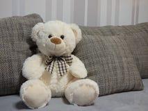 Urso de peluche branco no sofá Imagem de Stock