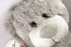 Urso de peluche cinzento Fotos de Stock