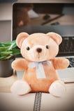 Urso de peluche de Brown com curva da fita azul Fotografia de Stock Royalty Free