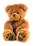 Urso de peluche do brinquedo Fotos de Stock