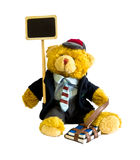 Urso de peluche do estudante Imagens de Stock Royalty Free