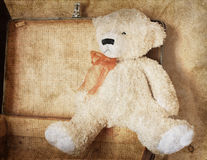 urso de peluche do Vintage-estilo Imagens de Stock Royalty Free