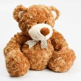 Urso de peluche peludo Imagens de Stock