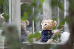 Urso de peluche só que senta e que olha para fora a janela Fotos de Stock