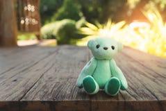 Urso de peluche verde no assoalho de madeira com fundo verde borrado Imagens de Stock Royalty Free