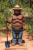 Urso de Smokey Imagens de Stock Royalty Free