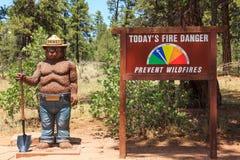 Urso de Smokey Imagens de Stock