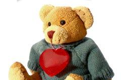 Urso de Taddy Foto de Stock