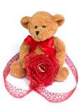 Urso do amor Imagem de Stock