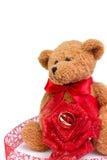 Urso do amor Imagens de Stock