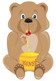 Urso do bebê que come o mel Fotografia de Stock