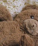 Urso do brinquedo do luxuoso fotos de stock royalty free
