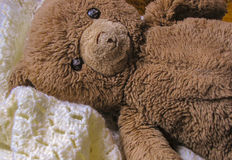Urso do brinquedo do luxuoso Fotografia de Stock Royalty Free