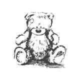 Urso do carvão vegetal do vetor ilustração stock