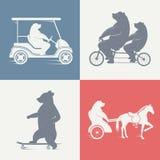 Urso do divertimento da ilustração do vetor Foto de Stock