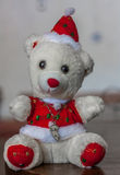 Urso do luxuoso do Natal Foto de Stock Royalty Free