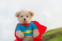 Urso do super-herói Fotos de Stock Royalty Free