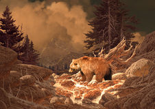 Urso do urso nas montanhas rochosas ilustração do vetor