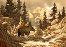 Urso do urso no Tetons ilustração do vetor