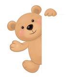 Urso do vetor que esconde pela placa Fotos de Stock Royalty Free