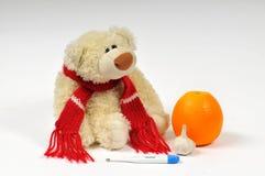 Urso doente Imagem de Stock Royalty Free