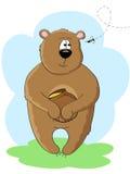 Urso e abelha Imagens de Stock Royalty Free