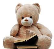Urso e livros Imagens de Stock
