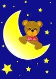 Urso e lua Fotos de Stock