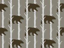 Urso e vidoeiro sem emenda do teste padrão Imagem de Stock Royalty Free