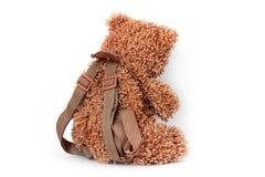 Urso em um fundo branco foto de stock royalty free