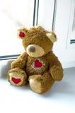 Urso em um peitoril do indicador Imagens de Stock Royalty Free