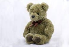 Urso enchido do brinquedo em um fundo branco Fotos de Stock