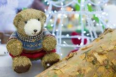 Urso engraçado fotos de stock
