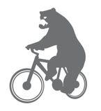 Urso engraçado em uma bicicleta Imagens de Stock Royalty Free