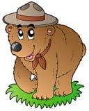 Urso feliz do escuteiro dos desenhos animados Imagem de Stock